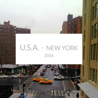USA NEW YORK COVER